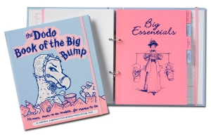 Book of the Big Bump