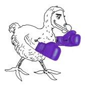 dodo-boxing